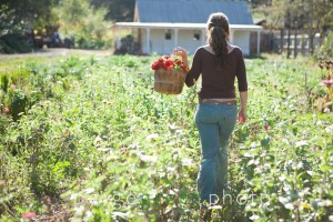 Paige Green Photography: Gospel Flat Farm Bolinas